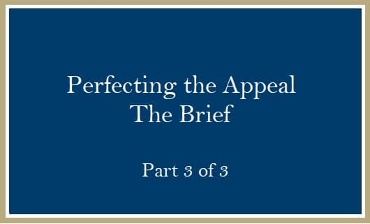 Perfecting the Appeal The Brief